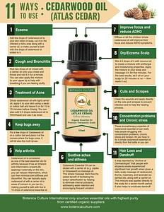 Uses of Cedarwood Essential Oil